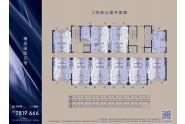 兰亭荟-2号楼公寓平面图