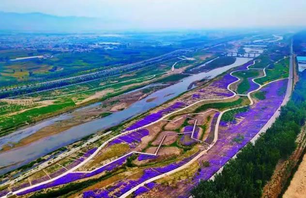 色彩斑斓!汾河百公里中游示范区晋源段美景显现