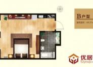 亲海国际B户型1室1厅1卫1厨 48.37㎡